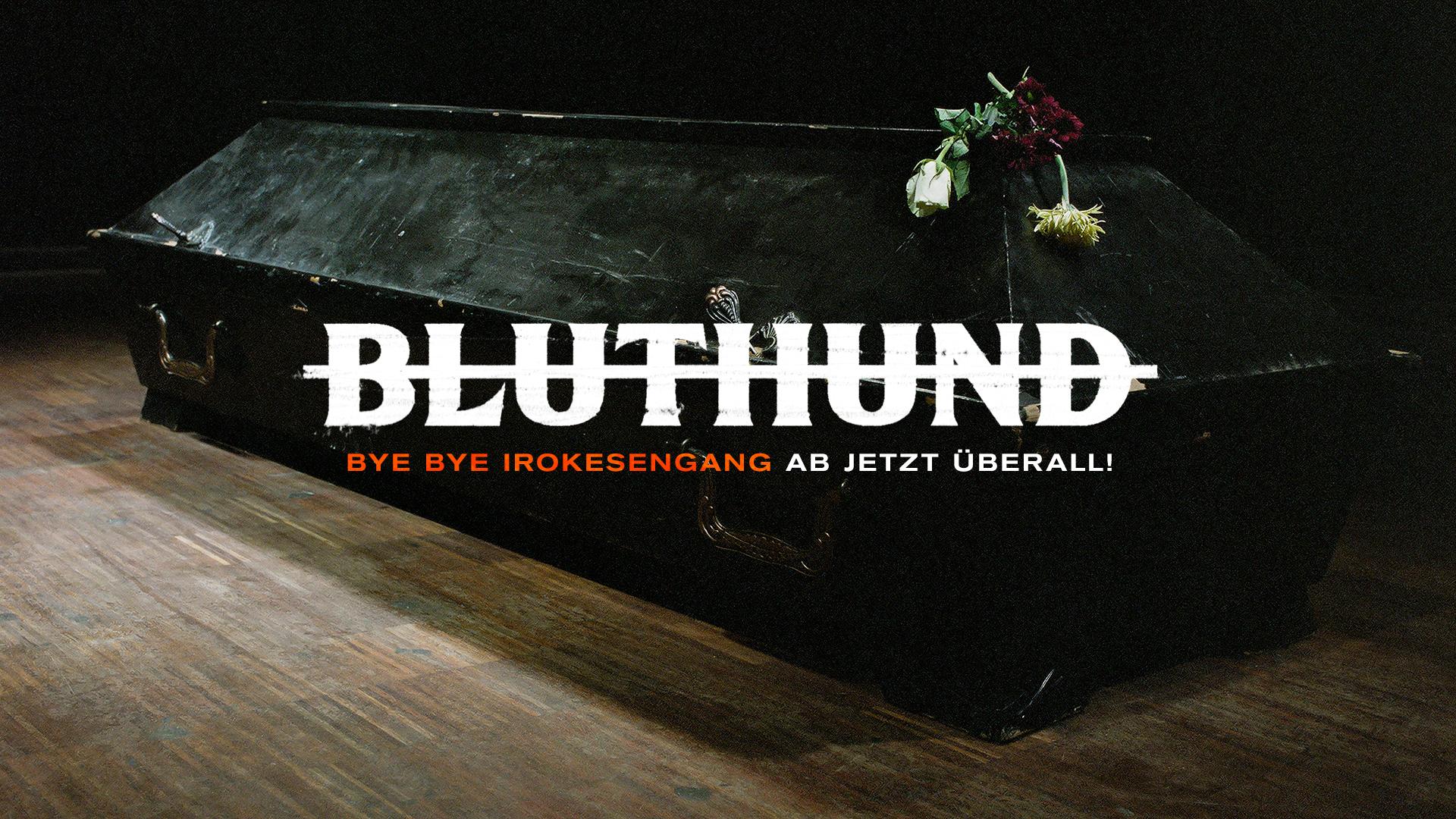 bluthund_bbig_FB-HEAD_2