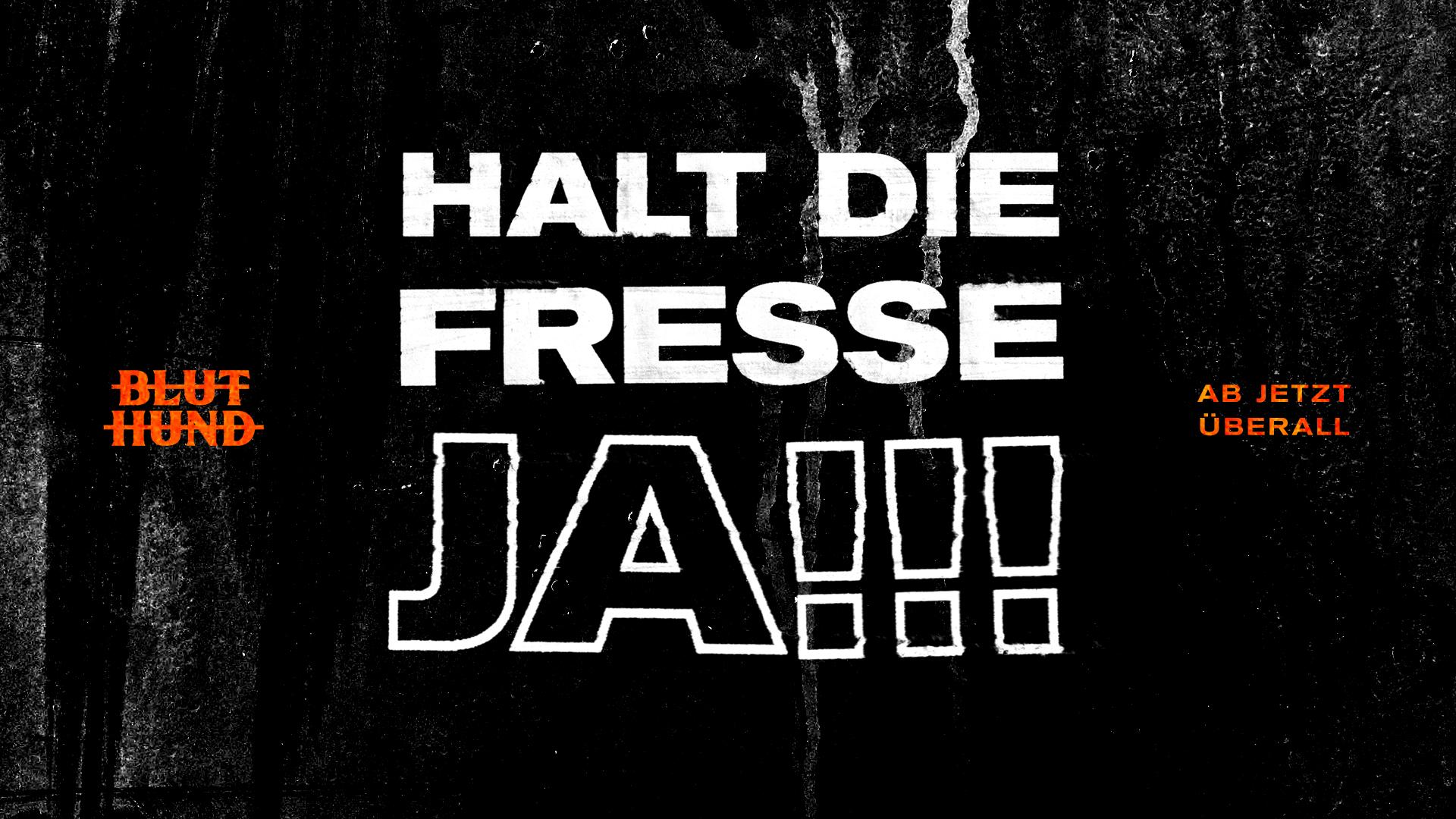 bluthund_haltdiefressehja_FB_header
